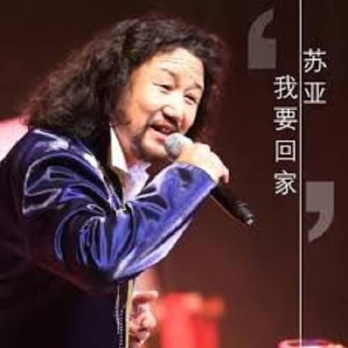 Wo Yao Hui Jia 我要回家 I Want To Go Home Lyrics 歌詞 With Pinyin By Su Ya 苏亚
