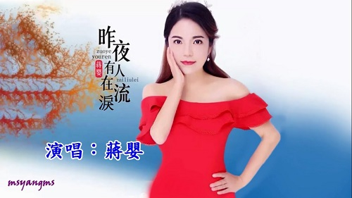 Zuo Ye You Ren Zai Liu Lei 昨夜有人在流泪 There Were Tears Last Night Lyrics 歌詞 With Pinyin By Jiang Ying 蒋婴