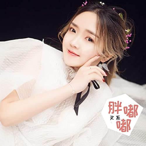 Pang Du Du 胖嘟嘟 Baby Fat Lyrics 歌詞 With Pinyin