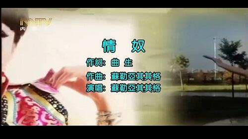 Qing Nu 情奴 Love Slave Lyrics 歌詞 With Pinyin