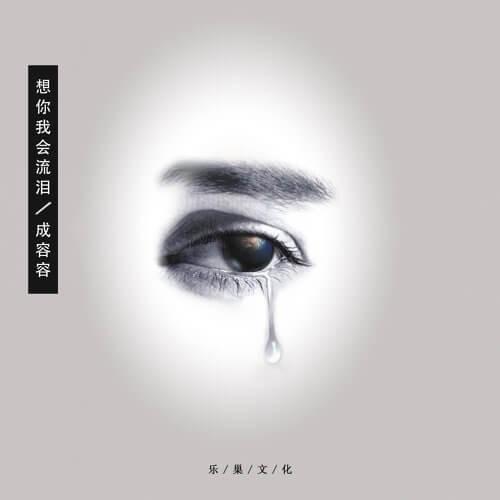 Xiang Ni Wo Hui Liu Lei 想你我会流泪 I'll Cry When I Miss You Lyrics 歌詞 With Pinyin