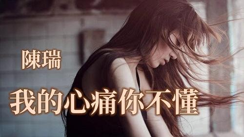 Wo De Xin Tong Ni Bu Dong 我的心痛你不懂 My Heartache You Don't Understand Lyrics 歌詞 With Pinyin