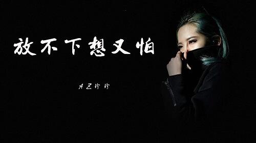 Fang Bu Xia Xiang You Pa 放不下想又怕 Can Not Put Down And Afraid Lyrics 歌詞 With Pinyin