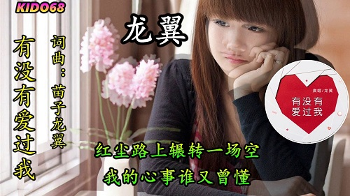 You Mei You Ai Guo Wo 有没有爱过我 Have You Ever Loved Me Lyrics 歌詞 With Pinyin