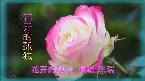 Hua Kai De Gu Du 花开的孤独 The Solitude Of Flowers Lyrics 歌詞 With Pinyin