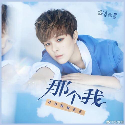Na Ge Wo 那个我 That I Lyrics 歌詞 With Pinyin