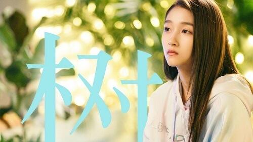 Shu 树 The Tree Lyrics 歌詞 With Pinyin