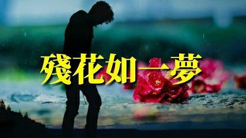 Can Hua Ru Yi Meng 残花如一梦 The Flowers Are Like A Dream Lyrics 歌詞 With Pinyin
