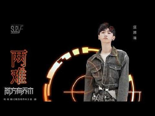 Liang Nan 两难 The Dilemma Lyrics 歌詞 With Pinyin