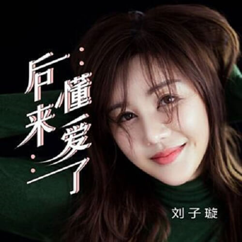 Hou Lai Dong Ai Le 后来懂爱了 Then I Understand Love Lyrics 歌詞 With Pinyin