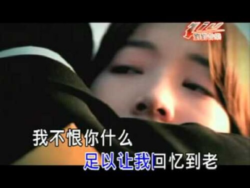 Wo Bu Hen Ni 我不恨你 I Don't Hate You Lyrics 歌詞 With Pinyin
