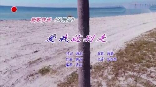 Ai Wo Jiu Bie Zou 爱我就别走 If You Love Me Don't Go Lyrics 歌詞 With Pinyin