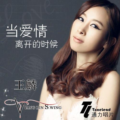 Dang Ai Qing Li Kai De Shi Hou 当爱情离开的时候 When Love Leaves Lyrics 歌詞 With Pinyin