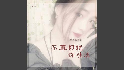 Bu Zai Da Rao Ni Sheng Huo 不再打扰你生活 No More Interruptions In Your Life Lyrics 歌詞 With Pinyin