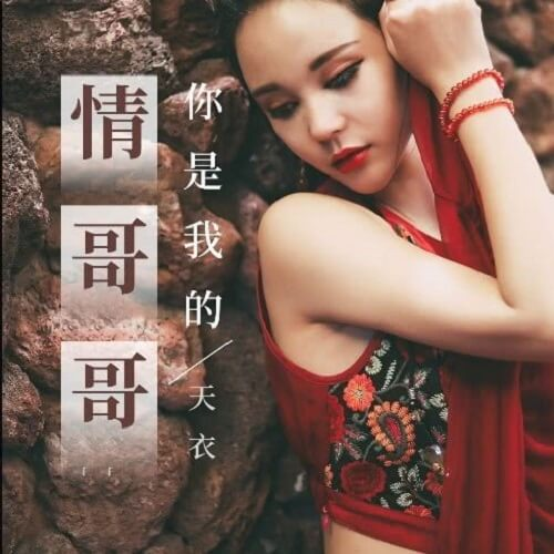Ni Shi Wo De Qing Ge Ge 你是我的情哥哥 You Are My Love Brother Lyrics 歌詞 With Pinyin