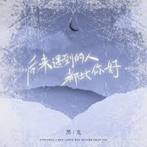 Hou Lai Yu Dao De Ren Dou Bi Ni Hao 后来遇到的人都比你好 Everyone I've Met Since Is Better Than You Lyrics 歌詞 With Pinyin