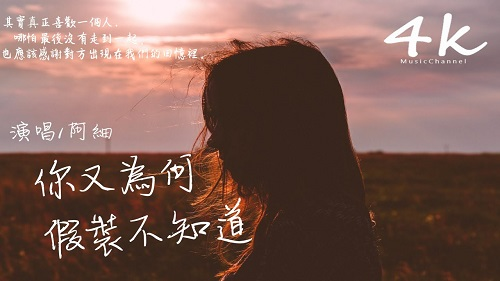 Ni You Wei He Jia Zhuang Bu Zhi Dao 你又为何假装不知道 Why Don't You Pretend To Know Lyrics 歌詞 With Pinyin