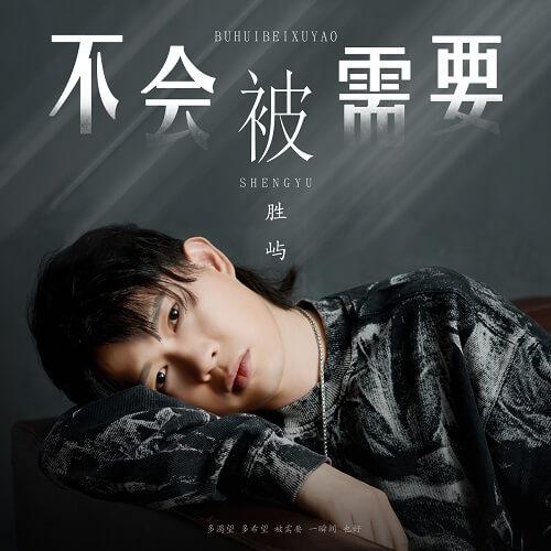 Bu Hui Bei Xu Yao 不会被需要 Will Not Be Needed Lyrics 歌詞 With Pinyin