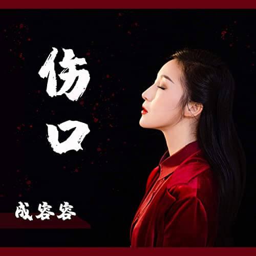 Shang Kou 伤口 The Wound Lyrics 歌詞 With Pinyin