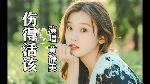 Shang De Huo Gai 伤得活该 Hurt So Deserved It Lyrics 歌詞 With Pinyin