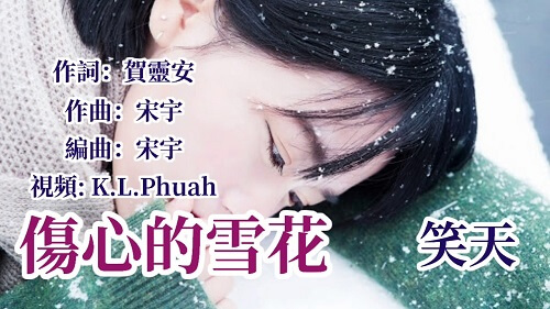 Shang Xin De Xue Hua 伤心的雪花 Sad Snowflakec Lyrics 歌詞 With Pinyin