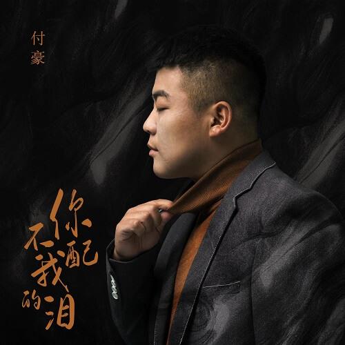 Ni Bu Pei Wo De Lei 你不配我的泪 You Don't Deserve My Tears Lyrics 歌詞 With Pinyin