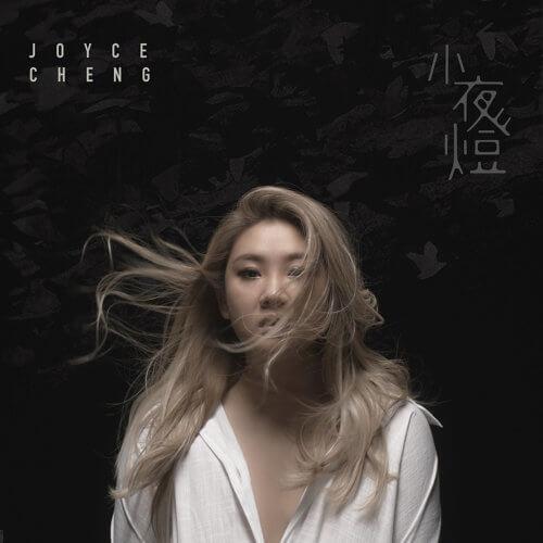 Xiao Ye Deng 小夜灯 Small Night Light Lyrics 歌詞 With Pinyin