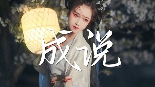 Cheng Shuo 成说 Lin Lyrics 歌詞 With Pinyin