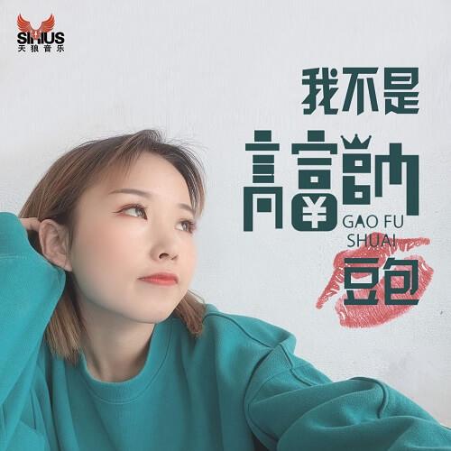 Wo Bu Shi Gao Fu Shuai 我不是高富帅 I Am Not Gao Fu Shuai Lyrics 歌詞 With Pinyin