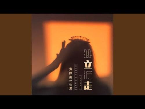 Du Li Xing Zou 独立行走 Independent Walking Lyrics 歌詞 With Pinyin