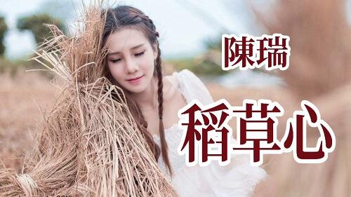 Dao Cao Xin 稻草心 Straw Heart Lyrics 歌詞 With Pinyin
