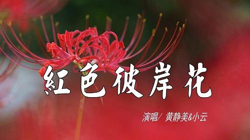 Hong Se Bi An Hua 红色彼岸花 Red Shore Flower Lyrics 歌詞 With Pinyin