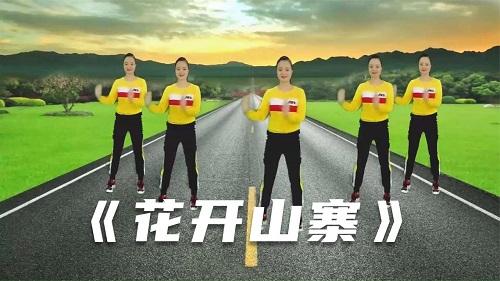 Hua Kai Shan Zhai 花开山寨 Fake Flowers Lyrics 歌詞 With Pinyin
