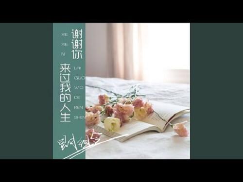 Xie Xie Ni Lai Guo Wo De Ren Sheng 谢谢你来过我的人生 Thank You For Living My Life Lyrics 歌詞 With Pinyin