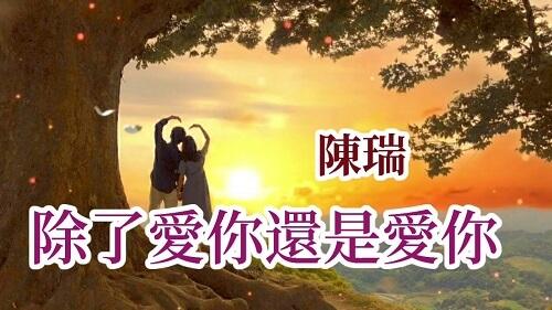 Chu Le Ai Ni Hai Shi Ai Ni 除了爱你还是爱你 In Addition To Love You Or Love You Lyrics 歌詞 With Pinyin