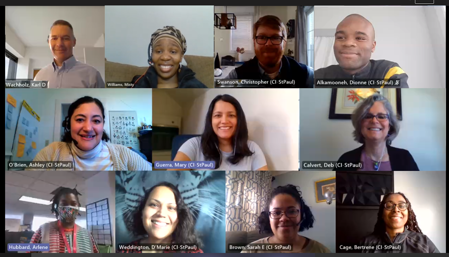 2021 planning committee members: gallery view in a virtual meeting (some members not pictured)