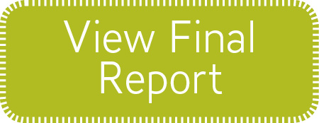 View final report