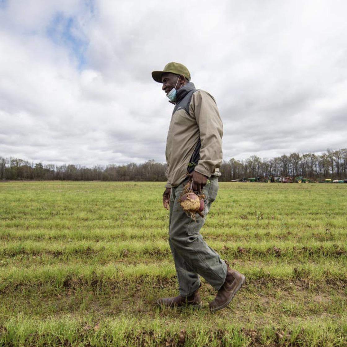 A black farmer walking through a field