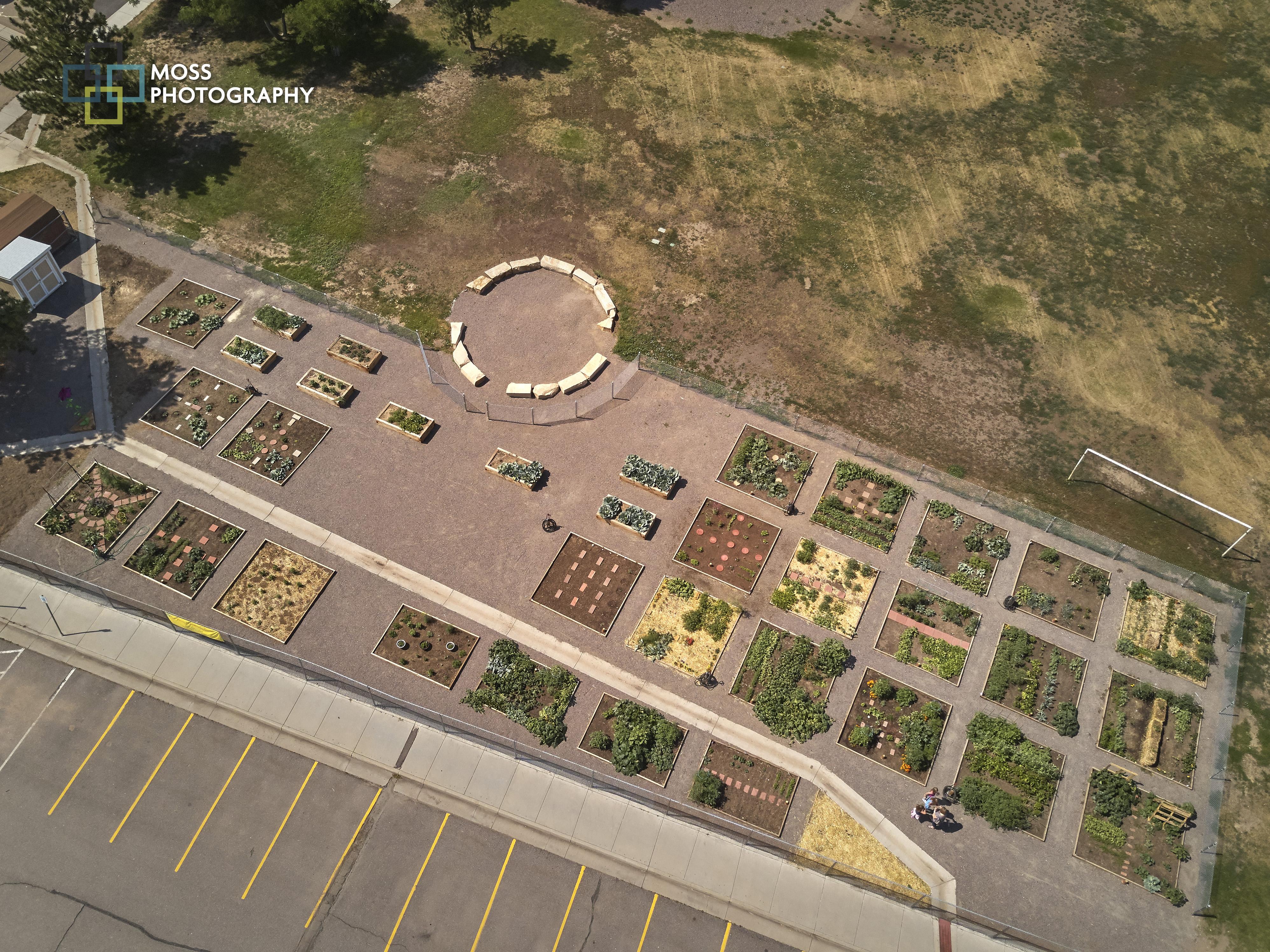School/Community Garden Success | Help us plan the next Community ...