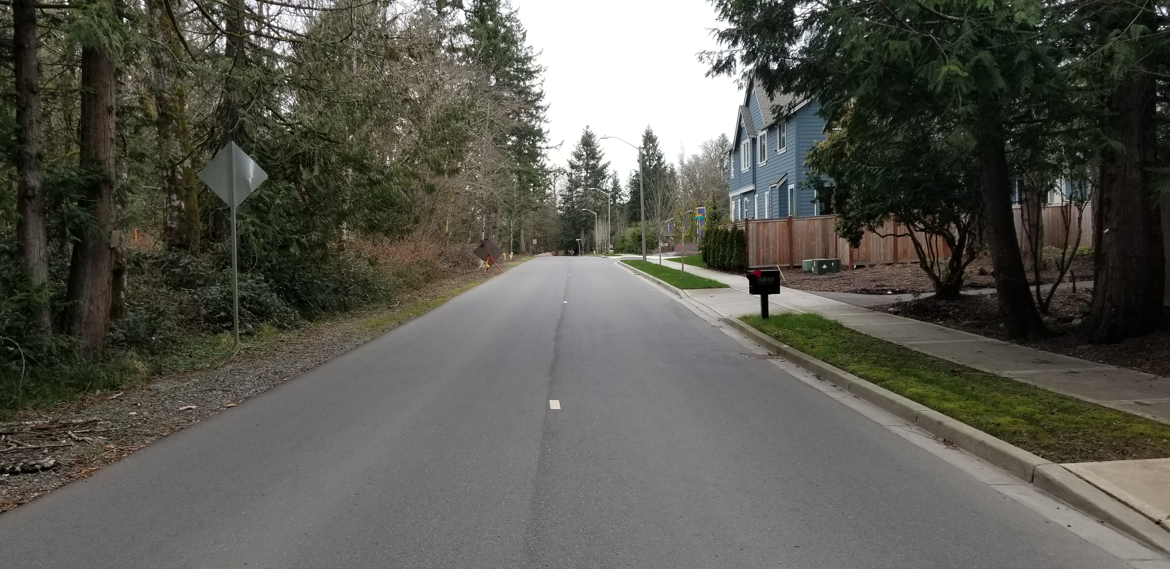 Section of 218th Ave SE as it exists today, as a two-lane road with grass on the left side and sidewalk on the right side bordering a neighborhood development
