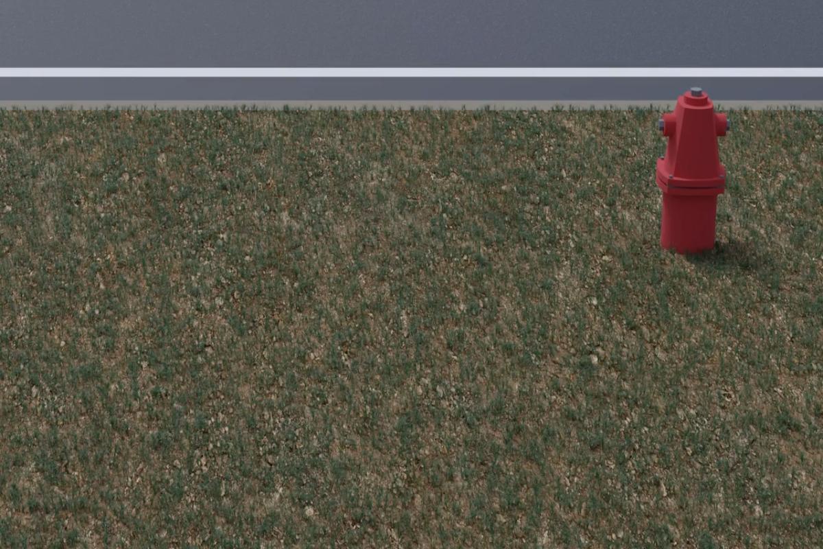 Growing Green Grass