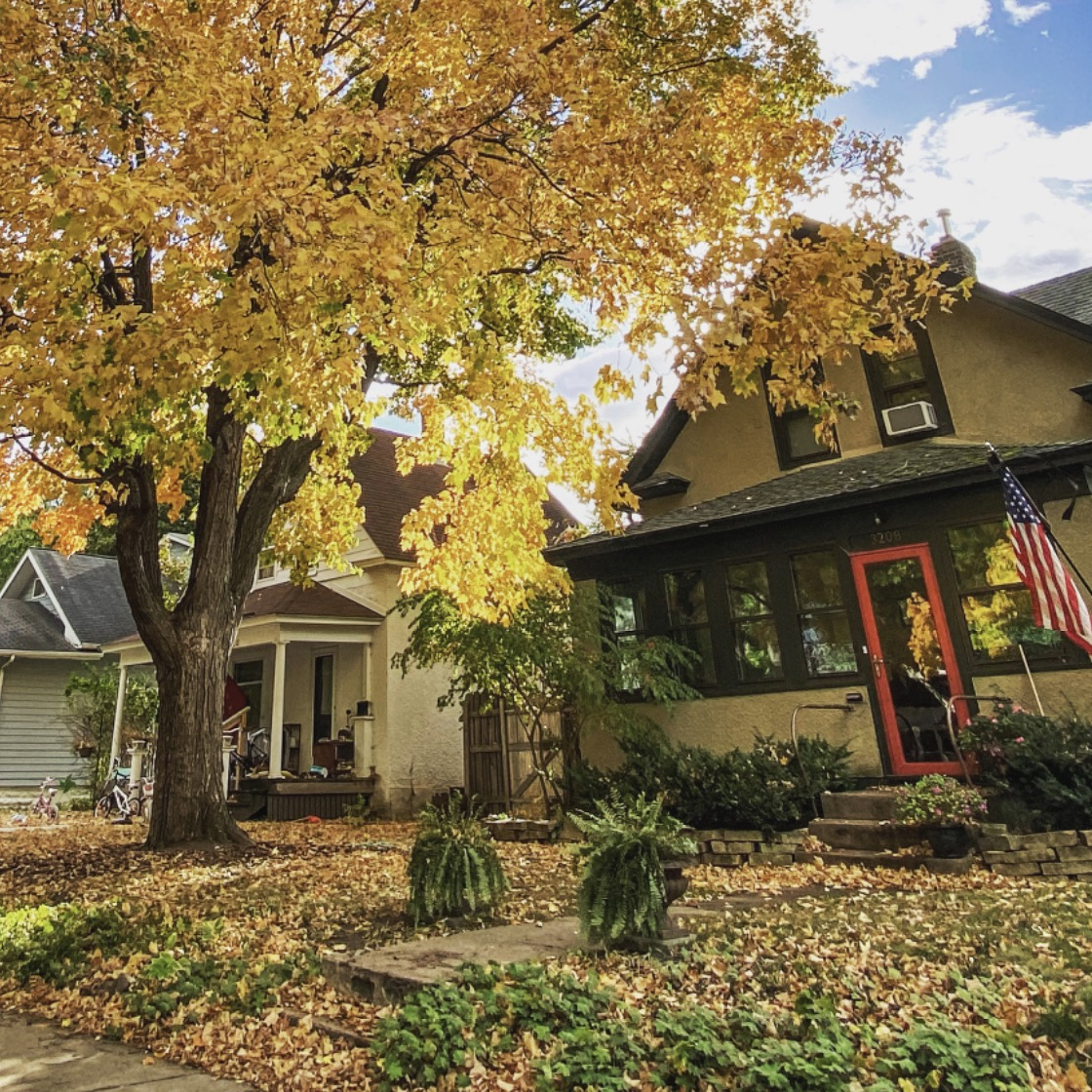A tree with falling yellow leaves in the front yard of a tan house with brown trim.