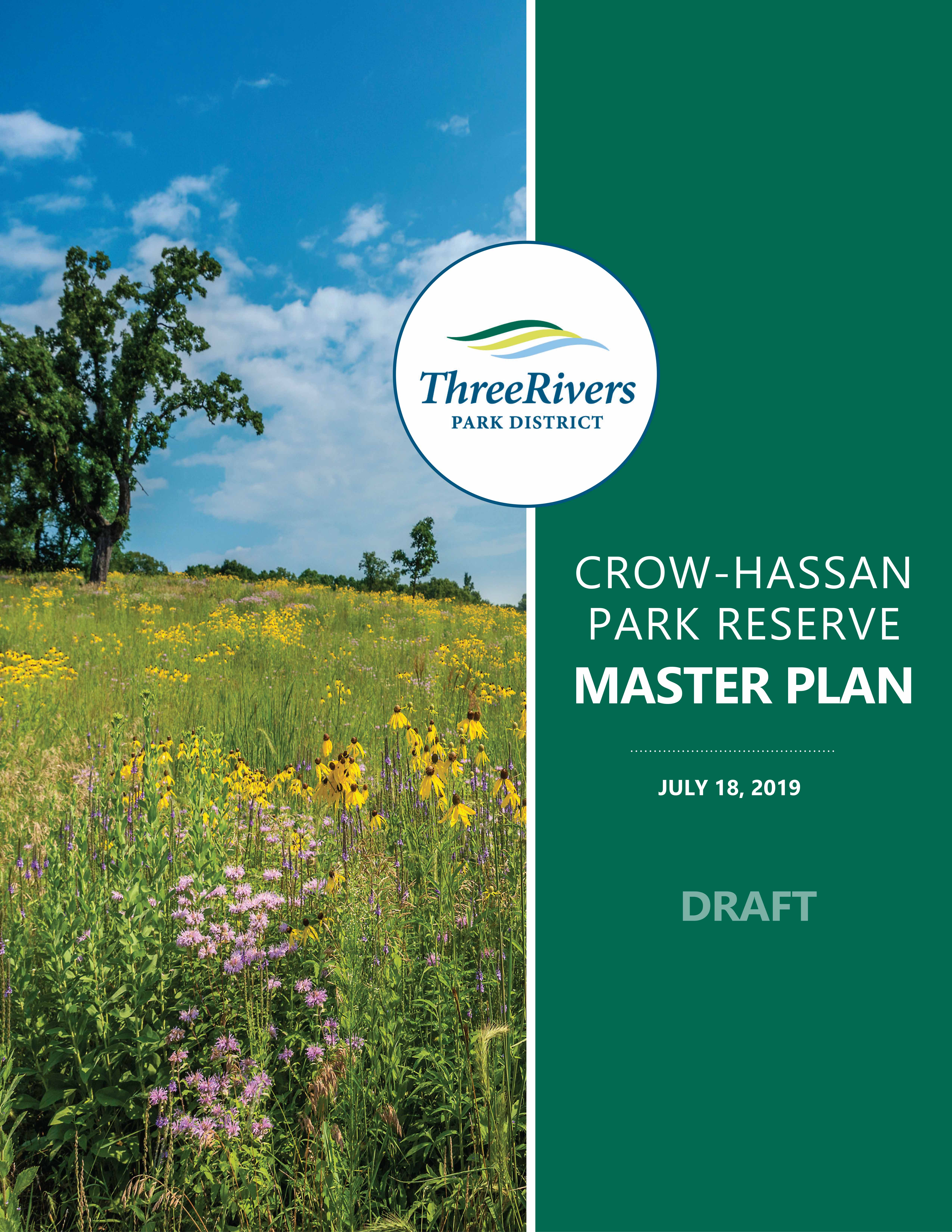 Crow hassan mp draft 07 11 19 cover