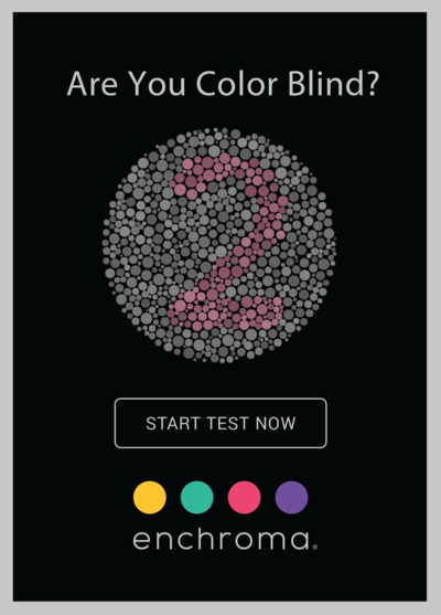 EnChroma color blind test