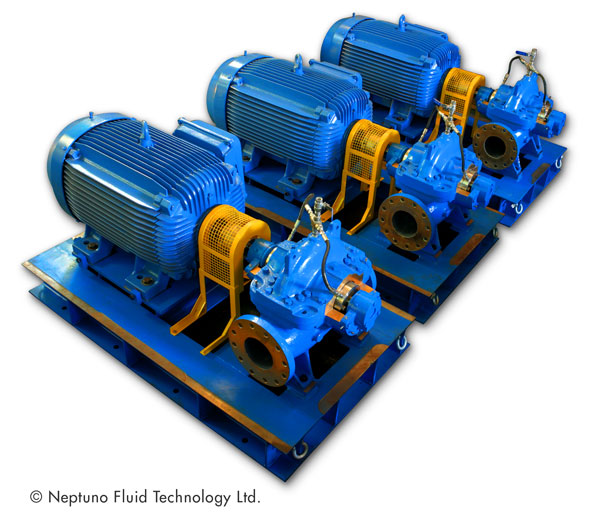 Axial Split Case Pumps - Neptuno Pumps®
