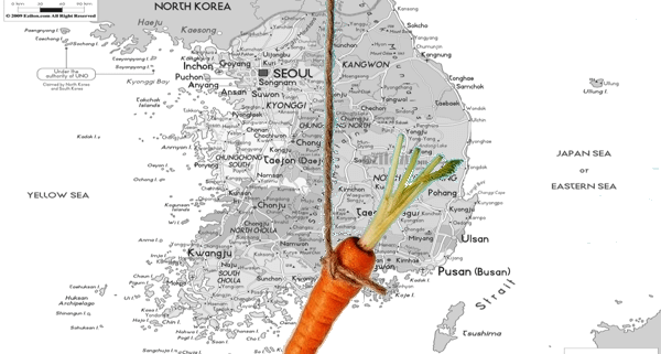 Korea map carrot dangle