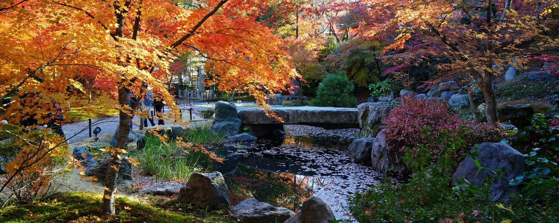 Nagaoka-tenmangu-Nagaokakyo-Kyoto-pref-Japan
