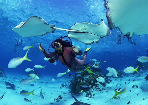 Best place in the world to satisfy your scuba diving dream