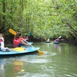 Do kayaking at the Langwaki to enjoy the nature