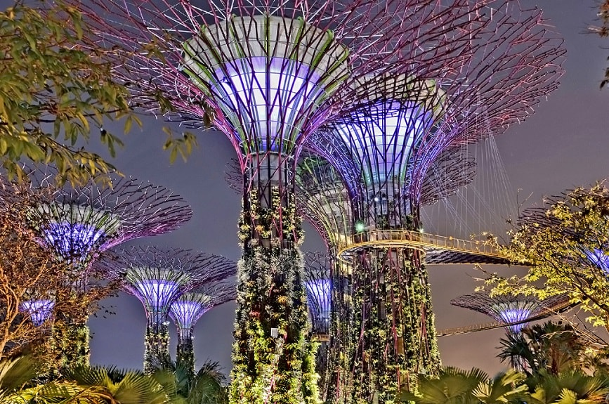 Light show in the evening at the Gardens by The Bay